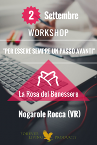 Workshop Nogarole