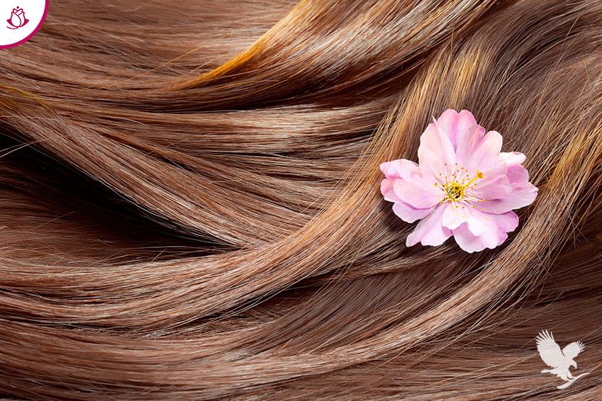 benessere cura capelli
