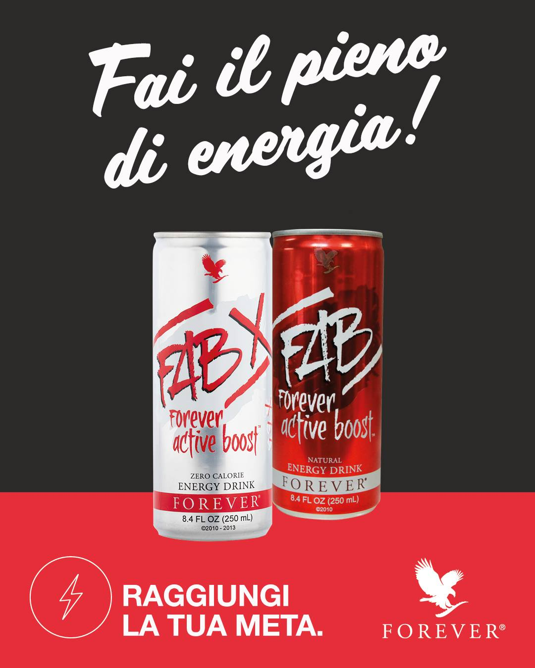 FAB E FABX - LA TUA CARICA ENERGETICA PRONTA DA BERE - SuccoAloeVera - Forever Living