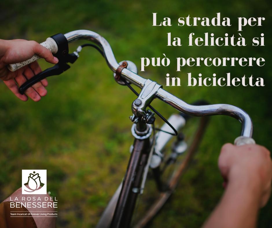 LA STRADA PER LA FELICITÀ SI PUÒ PERCORRERE IN BICICLETTA! - Succoaloevera - Forever Living