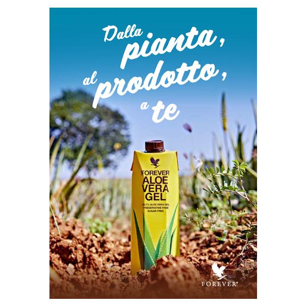 DEPLIANT DALLA PIANTA, AL PRODOTTO, A TE
